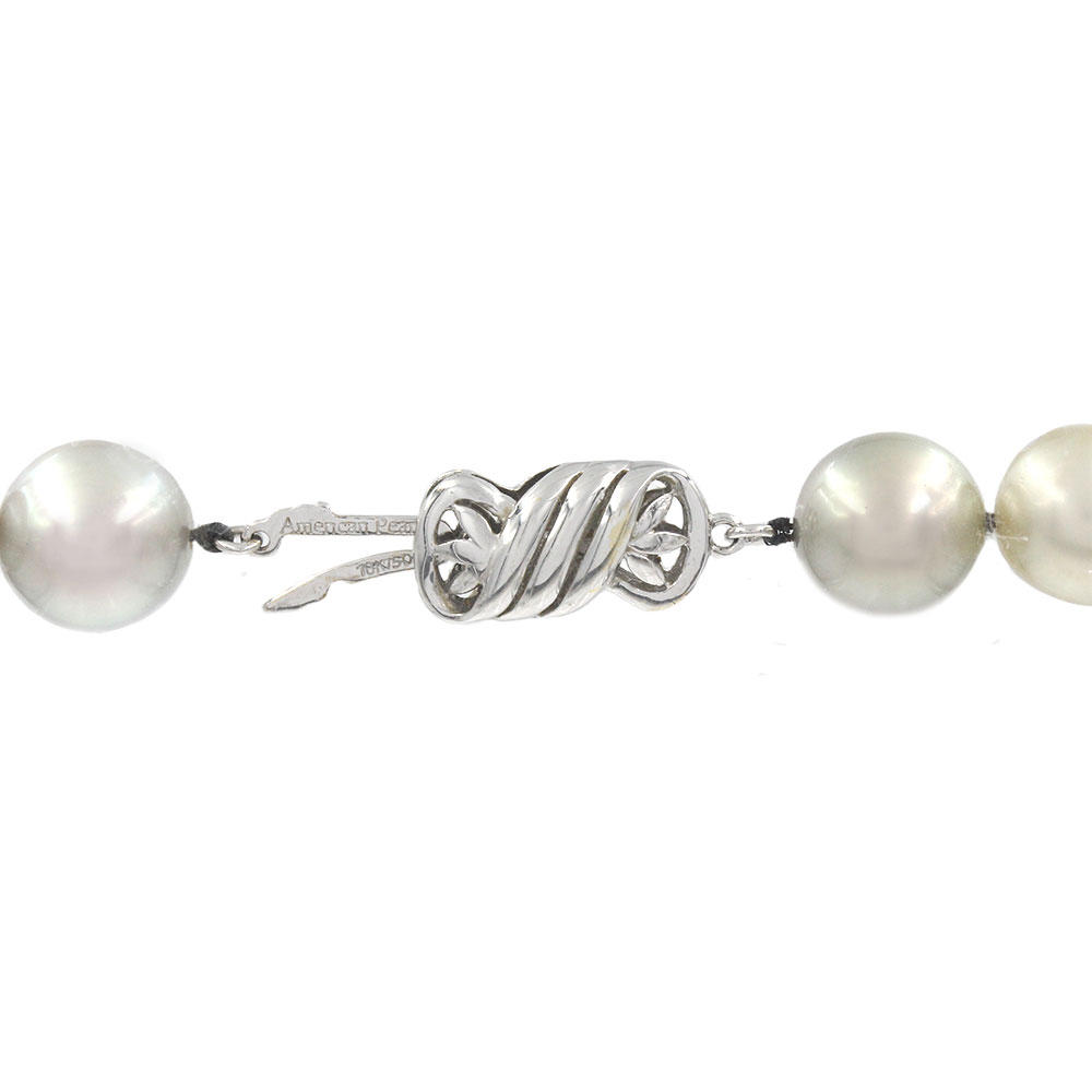 South Sea Pearl Necklace with Gold Clasp
